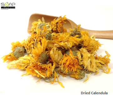 Soap Artisan | Calendula Dried Flowers  干燥金盞花