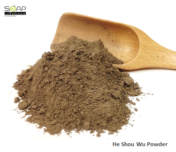 Soap Artisan | He Shou Wu (Polygonum Multiflorum) Powder  何首乌粉