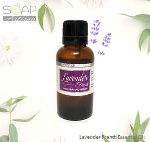 Soap Artisan | Lavender French Essential Oil