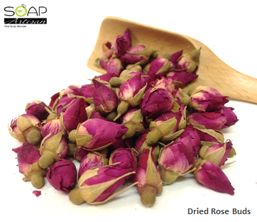 Soap Artisan | Dried Rose Buds 干燥玫瑰花苞
