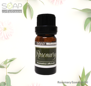 Soap Artisan | Rosemary Essential Oil