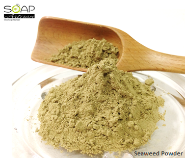Soap Artisan | Seaweed Powder 海藻粉