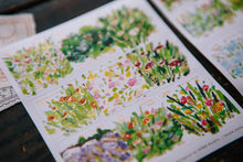 Load image into Gallery viewer, Blooming Spring Postal Sticker Pack - OURS