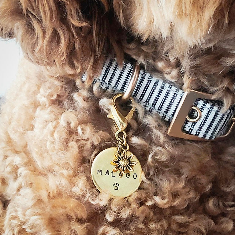 Furry Friend Name Tag - misterrobinson