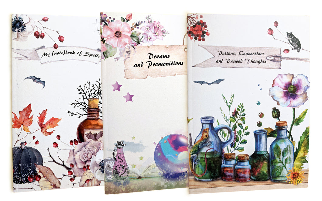 Pocket Notebook BUNDLE OF 3 - recycled paper cover