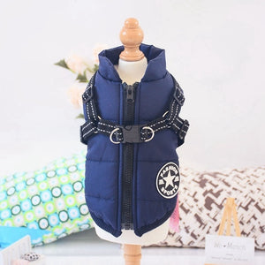 Winter Pet Jacket With Hood