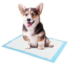 Load image into Gallery viewer, Disposable Dog Diaper Mat