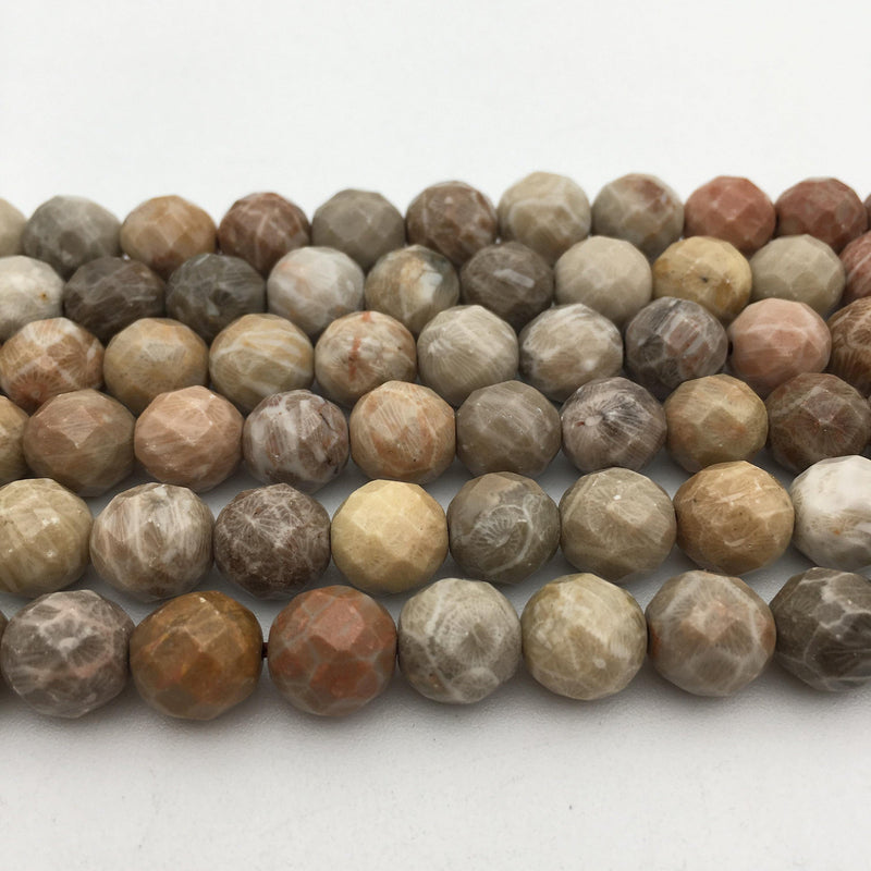 natural fossil coral faceted round beads