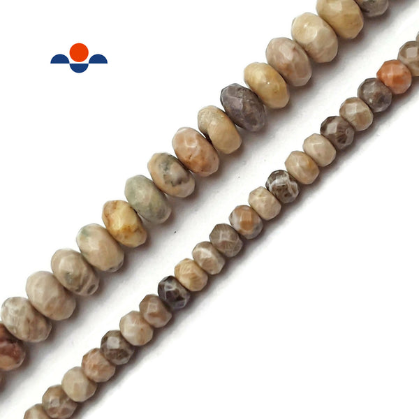 "Natural Fossil Coral Faceted Rondelle Beads 4x6mm 6x10mm 15.5"" Strand"