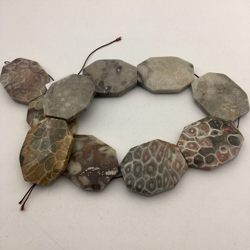 natural fossil coral rectangle slice faceted octagon beads