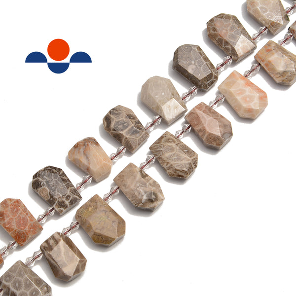 fossil coral faceted trapezoid shape beads