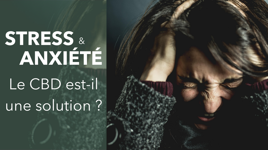 Truth and Right CBD Stress et anxiété solution