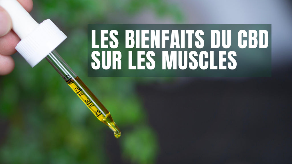 Les bienfaits du CBD sur les muscles Truth and Right CBD