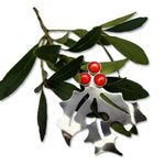 Bipin silver holiday holly pin with red bamboo coral