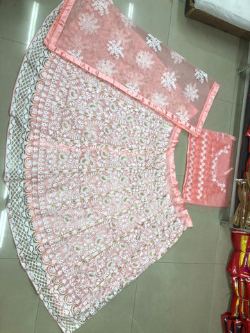 Net lehenga Choli With Dupatta Net