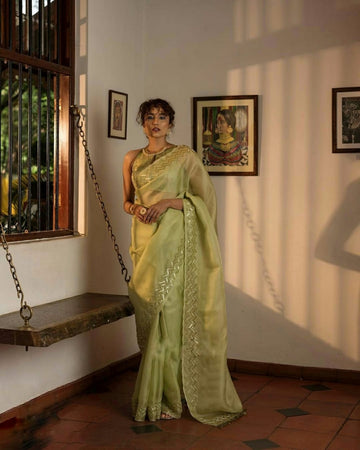 SEQUENCE EMBROIDERY WORK ORGANZA SAREE