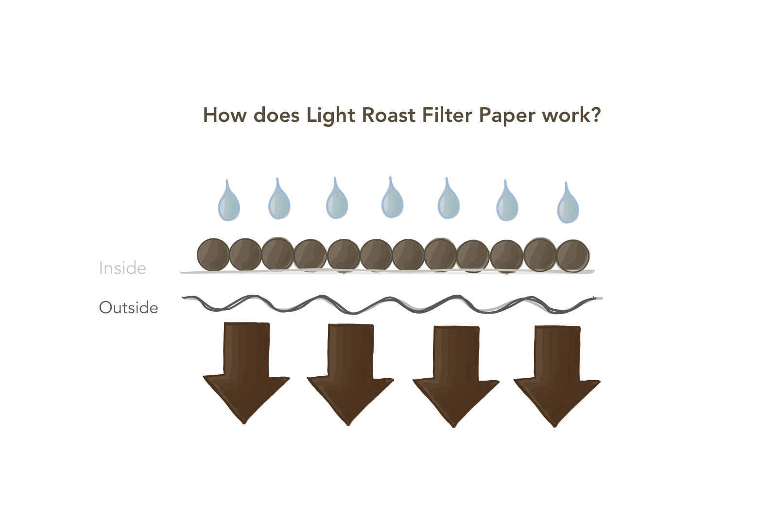 How does Light Roast Filter Paper Work?