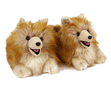 Load image into Gallery viewer, Pomeranian Slippers