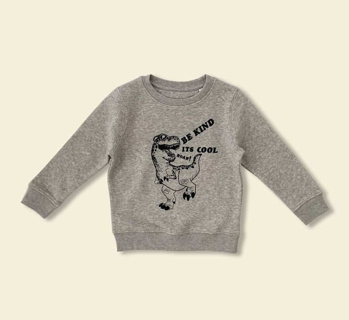 It's cool to be kind dino sweater