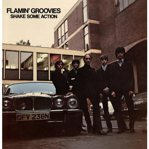 Flamin' Groovies - Shake Some Action (CD)