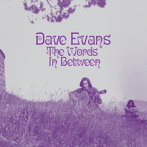 Dave Evans - The Words Inbetween (LP)