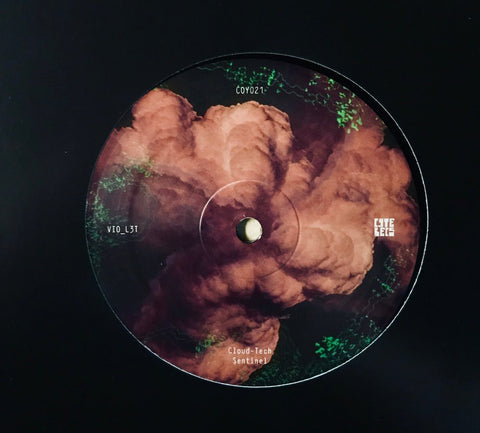 "VIO_L3T - Cloud-Tech (12"")"