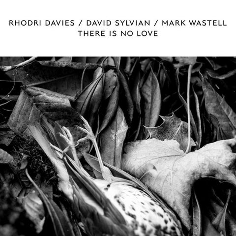 Rhodri Davies/David Sylvian/Mark Wastell - There Is No Love (LP, White Vinyl)