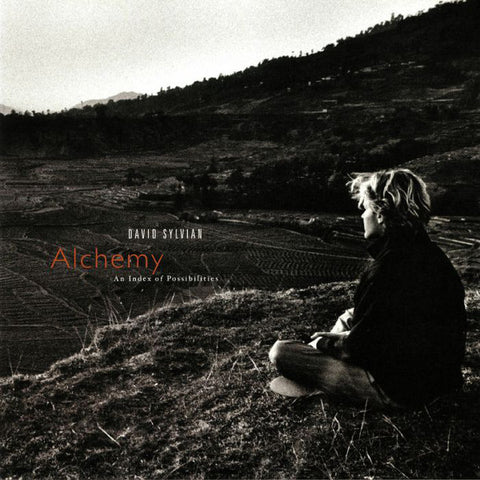 David Sylvian - Alchemy An Index Of Possibilities (LP)