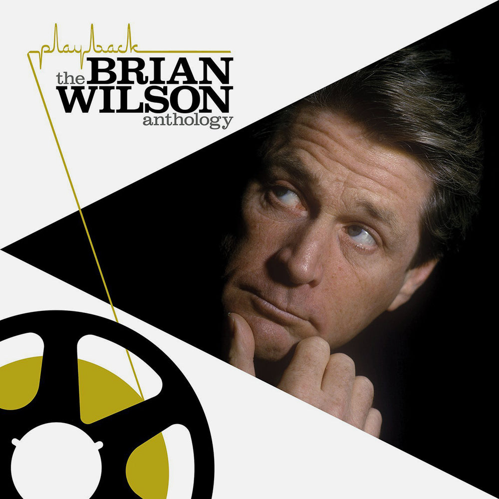 Brian Wilson - Playback The Brian Wilson Anthology (2xLP)