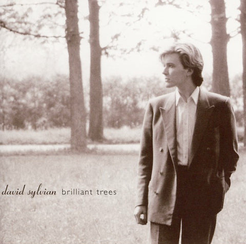 David Sylvian - Brilliant Trees (CD)