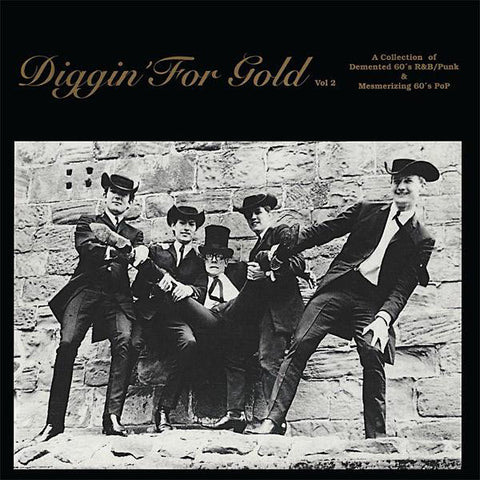 Various - Diggin' For Gold Vol 2 (LP, coloured vinyl)