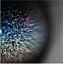 Emptyset - Blossoms (LP, Colour Vinyl)