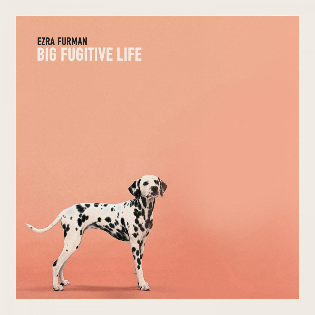 "Ezra Furman - Big Fugitive Life EP (10"")"