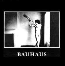 Bauhaus - In The Flat Field (LP)