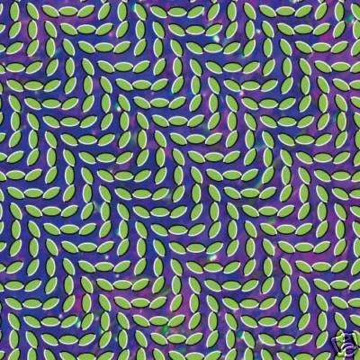 Animal Collective - Merriweather Post Pavilion 2xLP