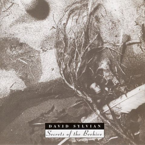 David Sylvian - Secrets Of The Beehive (CD)