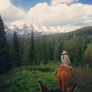 Green River & Bridger-Teton Outfitters