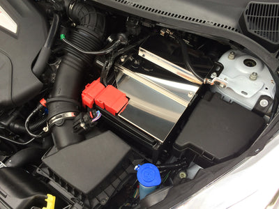 Fiesta MK7 ST stainless battery cover