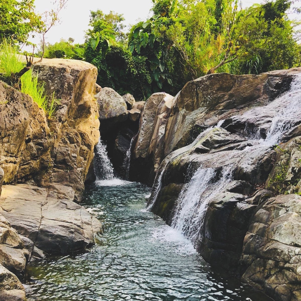 Ricandela Co The Fragrance And Aroma Of Puerto Rico