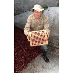Farm Photos Origin Coffee Colombia La Joyeria Grading