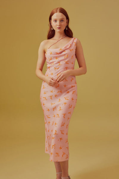 Allure Dress - Blush Ditzy Floral