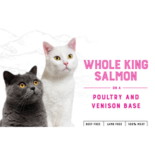 Load image into Gallery viewer, Feline Salmon & Poultry (10kg)