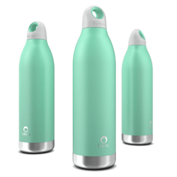 Bevu® Insulated Bottle Mint - Allccess