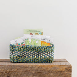 All Purpose Storage Tray | Green + Lime - Allccess