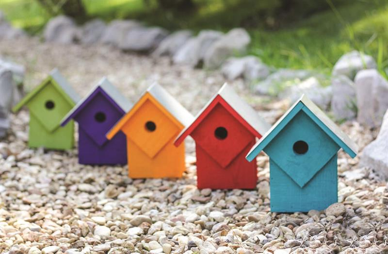 087C Summer Home Bird House - Assorted Neon Colors