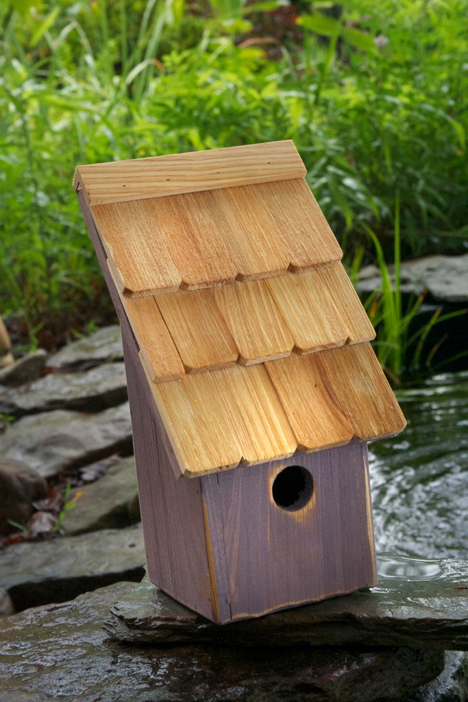 193B Fruit Coops Bird House - Grape