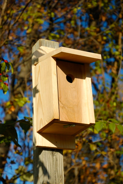 135A Eastern Bluebird & Swallow Bird House - Solid Cypress