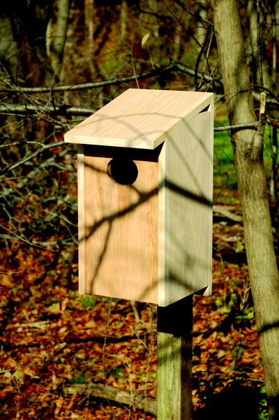 139A Wood Duck Bird House - Solid Cypress