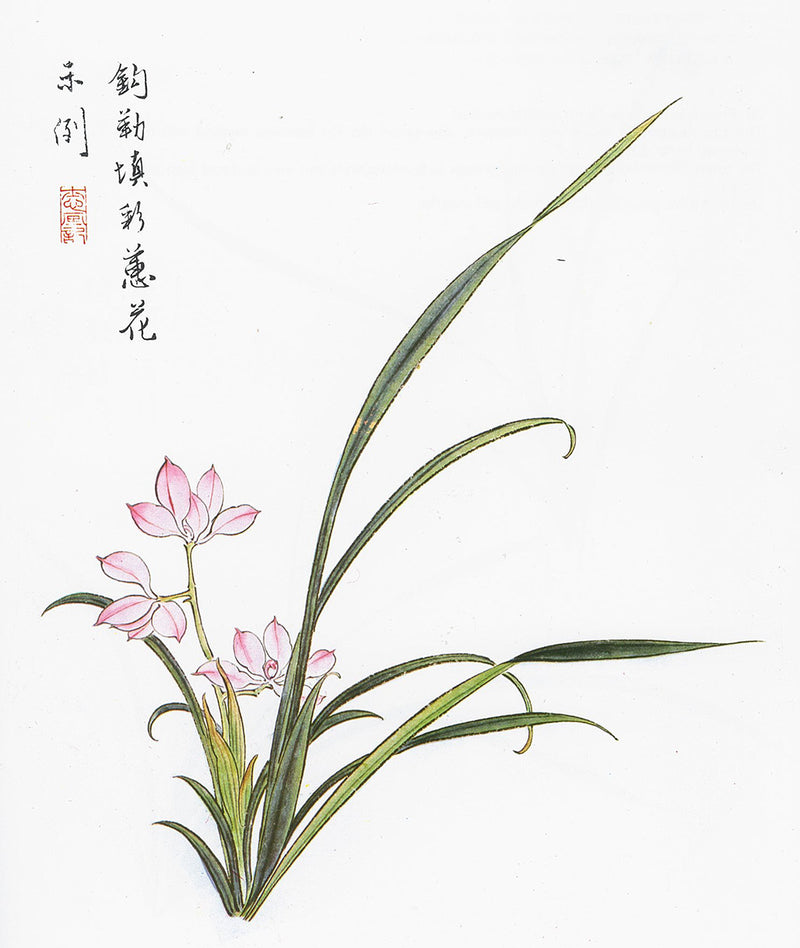 Orchid Paintings by Su-sing Chow from Fundamentals of Chinese Floral Painting Vol. 2: Book of the Orchid