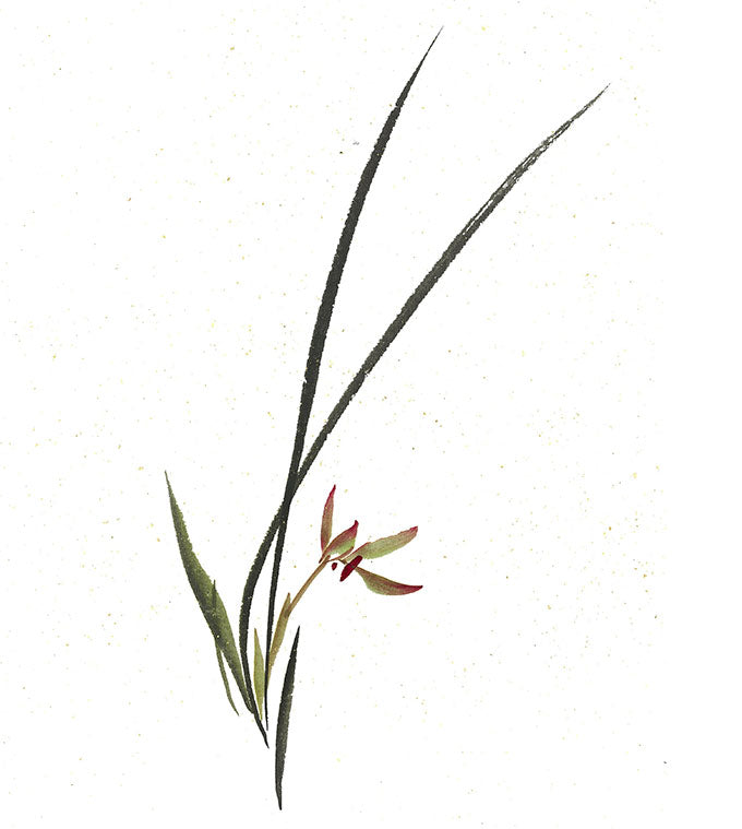 grass orchid in color on Vintage Gold Speckle Shuen